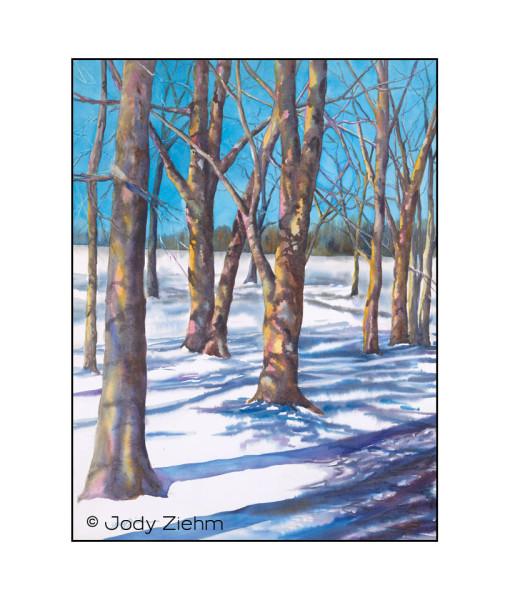 Jody Ziehm - JZ - Pine Woods Park