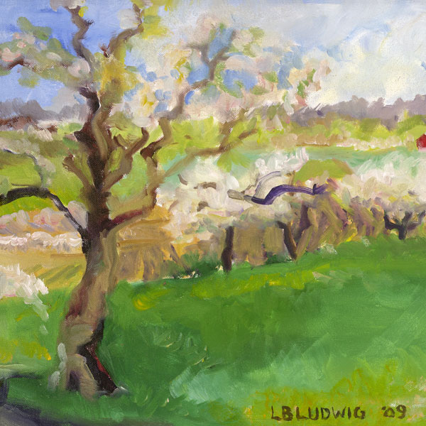 Linda B. Ludwig
