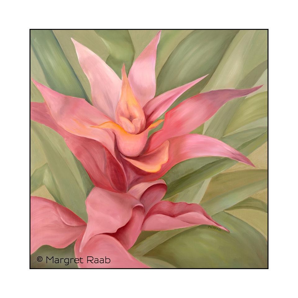 MRaab_MR106_Succulent