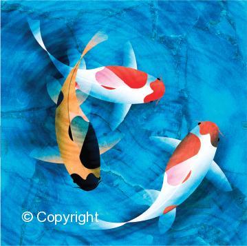 tcampbell_fish